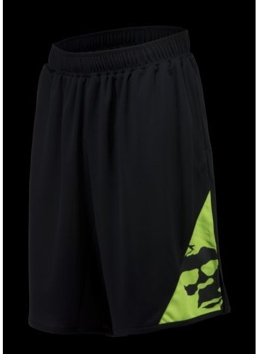 '15 Line Swagger Shorts